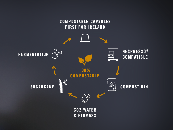 Compostable Coffee Capsule Infographic Graphic Design