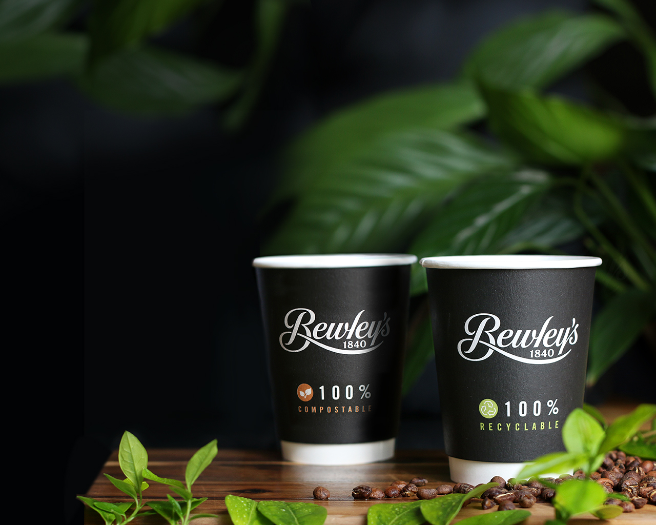 Bewley's Recyclable Compostable Takeaway Coffee Cups Design